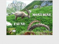 aventuremontagnefaune.fr