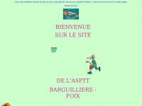 asptt.foix.basket.free.fr