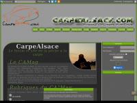 carpealsace.com