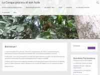 Carapaprocera.com