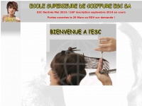 ecolesuperieuredecoiffure.com