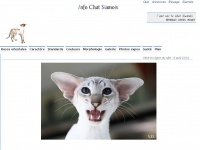 info-chat-siamois.fr