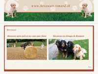 hovawart-romand.ch
