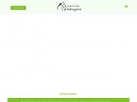 winiger-horse.ch