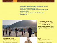 Zhi-neng-qi-gong.ch