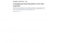 voyagevascolachaudiere.com