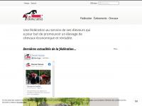 cheval-suisse.com