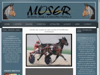 frederic-moser.ch