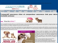 Assurance-chat-chien.net