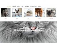Vetopedia.fr
