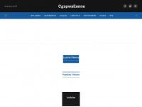 Cgspwallonne.be