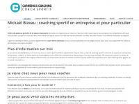 Carmenius-coaching.com