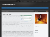 Concours-seo.fr
