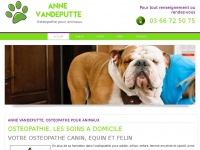 animaux.osteopathe-nord.fr
