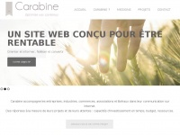 Carabine.net