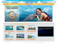 Dolphindiscovery.fr
