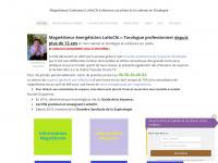 duquerroy-magnetiseur.fr Thumbnail