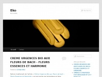 eko.fr Thumbnail