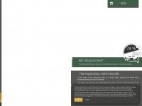 azur-hotel.fr