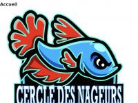 cn-gap.fr