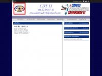 taekwondo13.fr