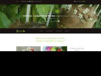 elodea-fleuriste.fr