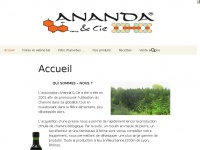 anandaetcie.org