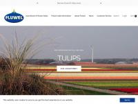 fluwel.com