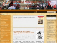 fnlp.fr Thumbnail