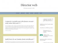Director-webgratuit.eu