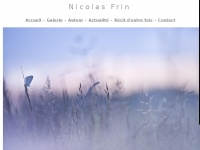 nicolasfrin.fr