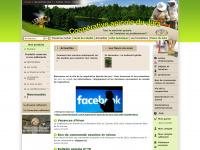 Cooperative-apicole.fr