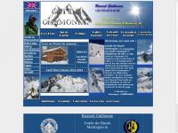 guides-chamonix.fr