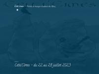 Celticimes.org