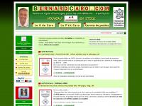 bernardcaro.com
