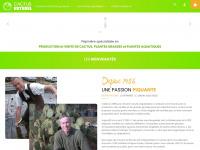 Cactus-esterel.fr