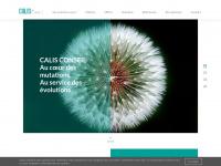 calis-conseil.com