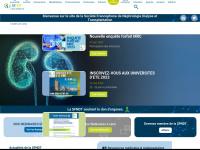 sfndt.org Thumbnail
