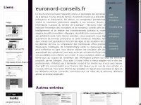 euronord-conseils.fr