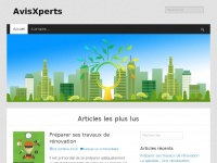 avisxperts.com