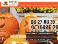 comptoirvullyavenches.ch