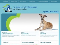 cliniqueveterinairemascouche.com
