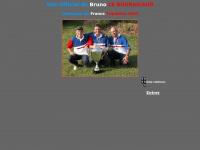 bruno.leboursicaud.free.fr
