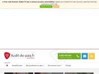 audit-de-paie.fr