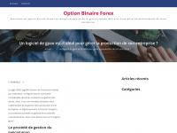 option-binaire-forex.com
