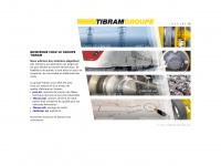 tibram-gruppe.ch