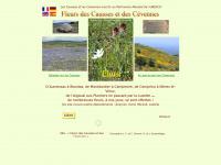 fleurscaussescevennes.fr