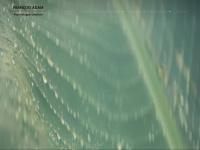 psychologue-rennes-francoisadam.com