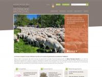 Assofrance-patrimoinemondial.org