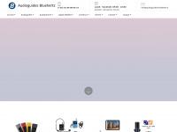 audioguides-bluehertz.fr